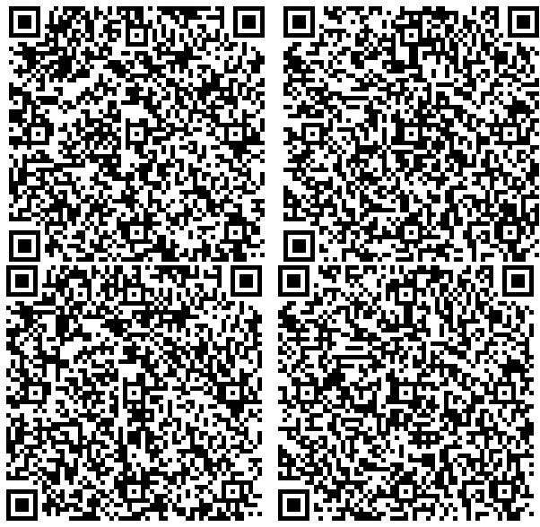 Cztery rodzaje przykładowego QR kodu